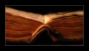 Like an open book... by Such-A-Dreamer