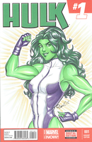 She Hulk blank cover by AerianR