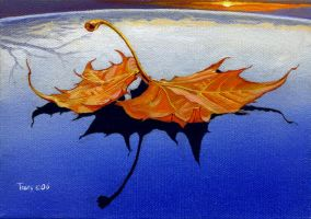 Car Roof with Fallen Leaf by hank1