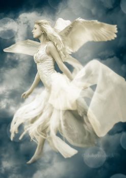 White Fairy or Angel? by Duviant