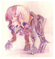 Triceratops Skeleton by griffsnuff