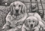 'Dog and Puppy' graphite drawing by Pen-Tacular-Artist
