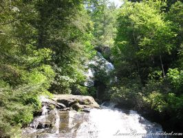 Anna Ruby Falls 3 by LunarBerry