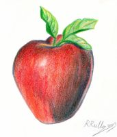 Red apple by shiprock