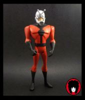 Antman JLU Custom by EnzoSixx