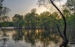 High Water at Sunset WP by t-maker