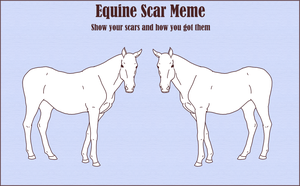 Equine Scar Meme by TehPage