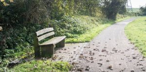 A Bench by TheBigDaveC