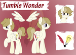 Tumble Wonder Reference Sheet 2014! by CraftyAllie