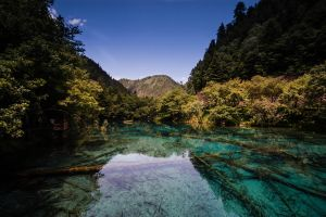 Jiuzhaigou - Arrow Bamboo Lake by stinebamse