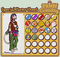 PKMN-Crossing Iris's special items by coyotepack