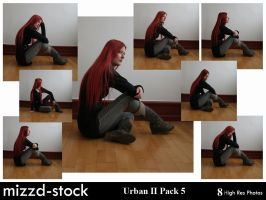 Urban Series II Pack 5 by mizzd-stock