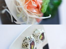 Sushi again - D305 by neoflo