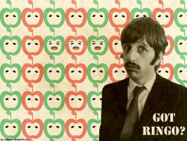 got ringo? wallpaper by nutbucket