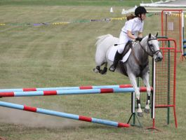 STOCK Showjumping 461 by aussiegal7