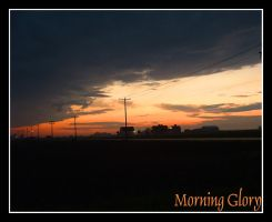 Morning Glory by ceaca