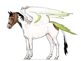 Equus Avis, ID#00106 by hh-harley
