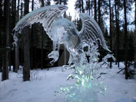 Ice bird makes a splash by veritasBtold