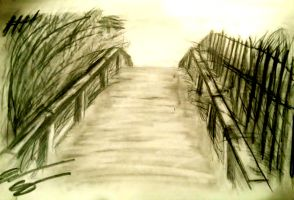 Footbridge by productofgallifrey