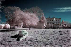 Infra red landscape by bandwmagpie