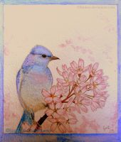 Blue Bird... by Binnus