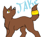 jake by whiteheartwarrior