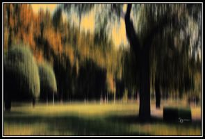 without you it's just like fall... by Shahsepram
