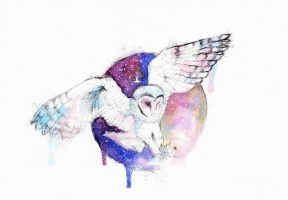 Owl and night by SophiaViolette