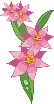 hot pink flower 6 by MaxandPercy4ever