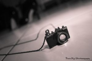 Capturing the moments by Nisnis79