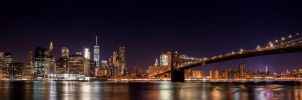 New York Panorama by AleckJo