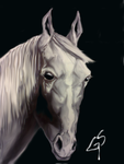 Horse Drawing by artegs