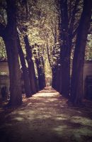 Pere-Lachaise... by FrancesHolly