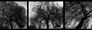 Treeptych by Phat-Set