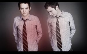 Elijah Wood Wallpaper by EpicActress