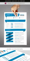 Indesign Resume Template A4 and Letter size by renefranceschi