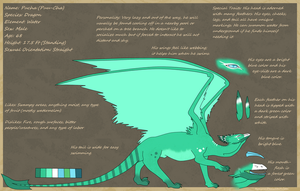 Pucha Reference Sheet by VeeSama