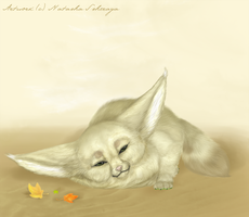 Autumn in the desert by Ssheraya