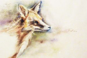 study of a fox by Minzile
