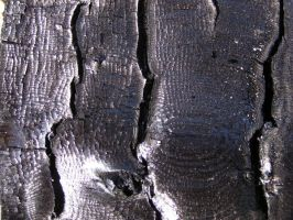 Charred wood texture by AnnFrost-stock