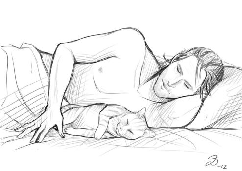 Dragon Age - Sleepy Kitties by YumiKoyuki