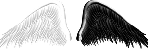 Good and Evil Angel Wings PNG 05 by Thy-Darkest-Hour