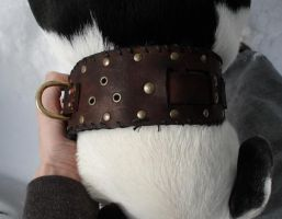 Dogs of war leather collar by missmonster