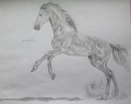 Horse Drawing #2 by greenpigsfly