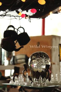 The Gypsy's Tent by WildWinyan