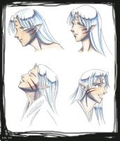 Sesshoumaru Head Studies by skipaway