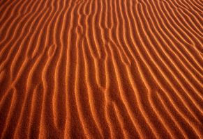 whole world in a grain of sand by alfieuk