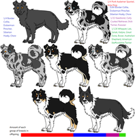 Mixed Breed Example - Slate Merles by Leonca