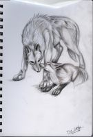 Wolf and Fox by MagicallyCapricious