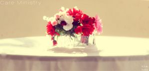 Valentines Flower's by BumbleBee2015